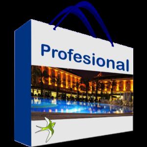 Sistemas para hoteles versión Profesional